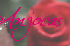 Anjocas4